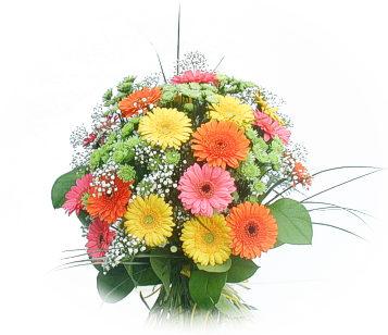 13 adet gerbera çiçegi buketi  Muğla online çiçekçi , çiçek siparişi