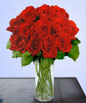 Anneme 12 adet cam içerisinde kirmizi gül  Muğla çiçek servisi , çiçekçi adresleri