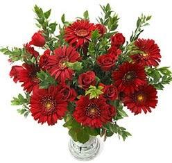 5 adet kirmizi gül 5 adet gerbera aranjmani  Muğla hediye sevgilime hediye çiçek