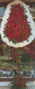Muğla çiçek siparişi vermek  dügün açilis çiçekleri  Muğla çiçek siparişi sitesi