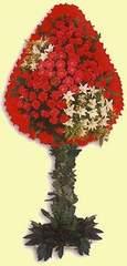 Muğla cicek , cicekci  dügün açilis çiçekleri  Muğla çiçek satışı