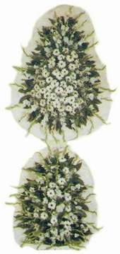 Muğla yurtiçi ve yurtdışı çiçek siparişi  dügün açilis çiçekleri nikah çiçekleri  Muğla çiçekçi mağazası