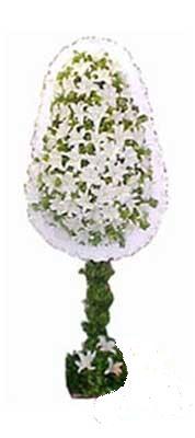 Muğla çiçek servisi , çiçekçi adresleri  nikah , dügün , açilis çiçek modeli  Muğla online çiçekçi , çiçek siparişi