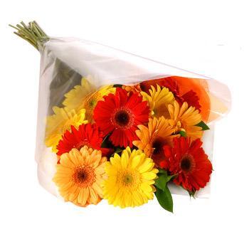Karisik renklerde gerbera buketi  Muğla İnternetten çiçek siparişi