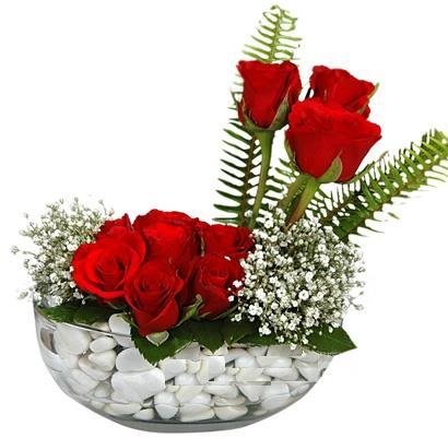 cam içerisinde 9 adet kirmizi gül  Muğla yurtiçi ve yurtdışı çiçek siparişi