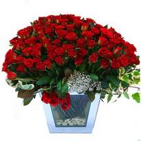 Muğla kaliteli taze ve ucuz çiçekler   101 adet kirmizi gül aranjmani