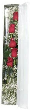 Muğla çiçek servisi , çiçekçi adresleri   5 adet gülden kutu güller