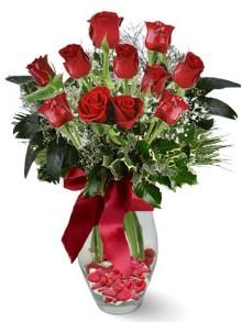 9 adet gül  Muğla çiçek mağazası , çiçekçi adresleri  kirmizi gül