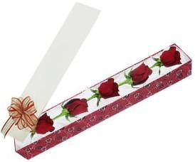Muğla çiçek mağazası , çiçekçi adresleri  kutu içerisinde 5 adet kirmizi gül