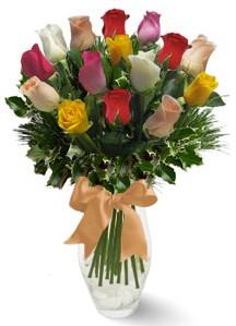 15 adet vazoda renkli gül  Muğla çiçek mağazası , çiçekçi adresleri