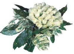 Muğla güvenli kaliteli hızlı çiçek  9 Beyaz gül Özel kisiler için