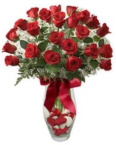 17 adet essiz kalitede kirmizi gül  Muğla ucuz çiçek gönder