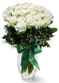 19 adet essiz kalitede beyaz gül  Muğla kaliteli taze ve ucuz çiçekler