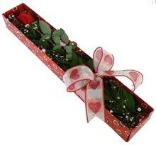 Tek kirmizi gül kutu içerisinde  Muğla çiçekçi mağazası