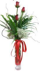 Muğla çiçek servisi , çiçekçi adresleri  3 adet kirmizi gül vazo içerisinde