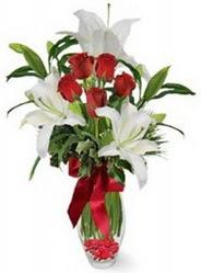 Muğla yurtiçi ve yurtdışı çiçek siparişi  5 adet kirmizi gül ve 3 kandil kazablanka
