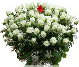 Muğla çiçek mağazası , çiçekçi adresleri  100 adet beyaz 1 adet kirmizi gül buketi