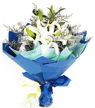 Muğla çiçek gönderme  4 adet dal kazablankadan görsel buket