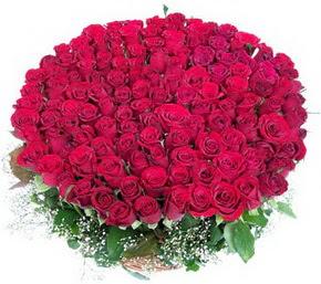 Muğla internetten çiçek satışı  100 adet kırmızı gülden görsel buket