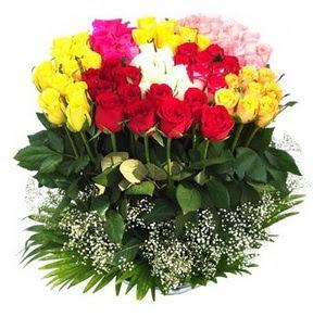 Muğla ucuz çiçek gönder  51 adet renkli güllerden aranjman tanzimi