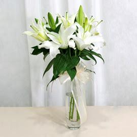 Muğla çiçek gönderme  2 dal kazablanka ile yapılmış vazo çiçeği