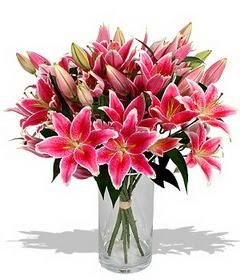 4 dal cazablanca görsel vazosu  Muğla çiçek online çiçek siparişi