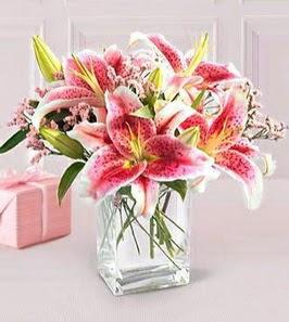 2 dal kazablanka görsel vazosu  Muğla çiçek servisi , çiçekçi adresleri