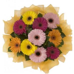 Muğla internetten çiçek siparişi  11 adet karışık gerbera çiçeği buketi