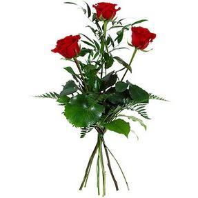 Muğla çiçek gönderme sitemiz güvenlidir  3 adet kırmızı gülden buket