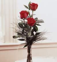 Muğla çiçek mağazası , çiçekçi adresleri  Vazoda 3 adet güzel gül