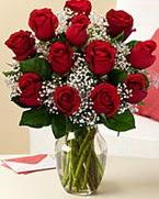 Sevgilime hediye 9 adet 1.ci kalite gül  Muğla çiçek gönderme