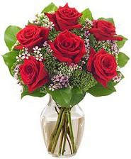 Kız arkadaşıma hediye 6 kırmızı gül  Muğla güvenli kaliteli hızlı çiçek