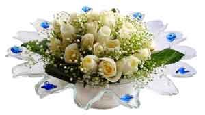 Muğla çiçek satışı  11 adet Beyaz güller özel cam tanzim