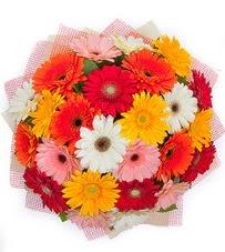 15 adet renkli gerbera buketi  Muğla çiçek siparişi sitesi