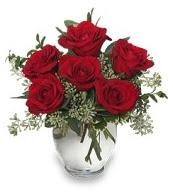 Vazo içerisinde 5 adet kırmızı gül  Muğla çiçek online çiçek siparişi