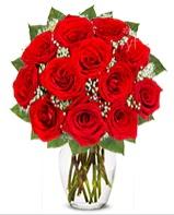 12 adet vazoda kıpkırmızı gül  Muğla çiçek yolla , çiçek gönder , çiçekçi