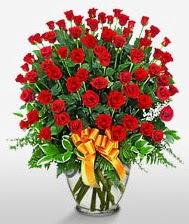 Görsel vazo içerisinde 101 adet gül  Muğla çiçek yolla , çiçek gönder , çiçekçi