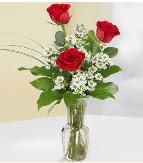 Vazo içerisinde 3 adet kırmızı gül  Muğla uluslararası çiçek gönderme