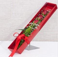 Kutu içerisinde 3 adet kırmızı gül  Muğla online çiçekçi , çiçek siparişi
