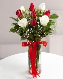 5 kırmızı 4 beyaz gül vazoda  Muğla İnternetten çiçek siparişi