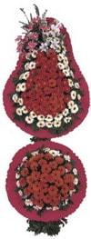 Muğla çiçek mağazası , çiçekçi adresleri  Model Sepetlerden Seçme 2