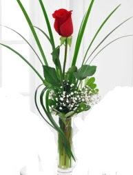 Cam içerisinde 1 kırmızı gül  Muğla çiçek siparişi vermek