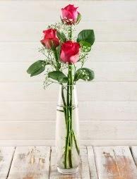 Cam içerisinde 3 kırmızı gül  Muğla uluslararası çiçek gönderme