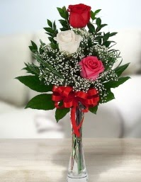 Camda 2 kırmızı 1 beyaz gül  Muğla anneler günü çiçek yolla