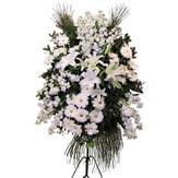 Muğla çiçek yolla , çiçek gönder , çiçekçi   Ferforje beyaz renkli kazablanka