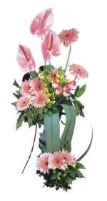 Muğla çiçekçi mağazası  Pembe Antoryum Harikalar Rüyasi