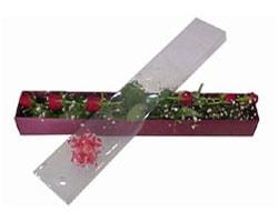 Muğla çiçek gönderme   6 adet kirmizi gül kutu içinde