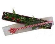 Muğla hediye sevgilime hediye çiçek  3 adet gül.kutu yaldizlidir.