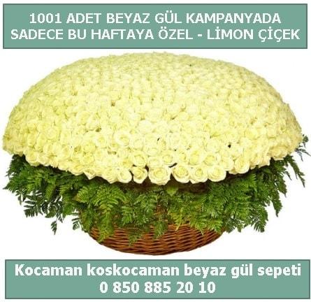 1001 adet beyaz gül sepeti özel kampanyada  Muğla çiçek siparişi vermek