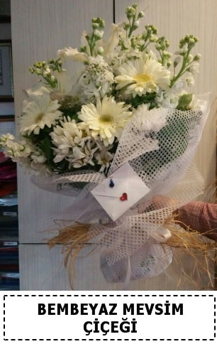 Bembeyaz görsel mevsim çiçek buketi  Muğla online çiçek gönderme sipariş